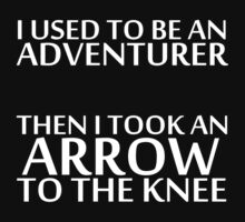 I Used to be an Adventurer, Then I took an Arrow to the Knee (Reversed Colours) by NiteOwl