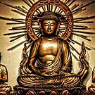 Zen by Robin Black