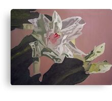 Christmas Blossom Print From Original Oil Painting Canvas Print