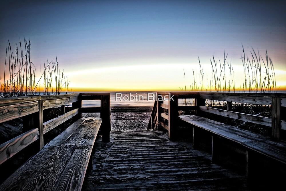 Sunrise in Salvo by Robin Black