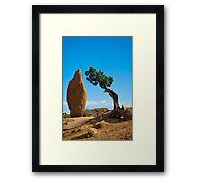 Joshua Tree Sentinals Framed Print