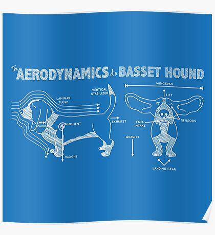 The Aerodynamics of a Basset Hound Poster