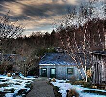 Winter Breaks by jimcrotty