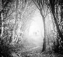 Fog Walkers 2  by Rory Garforth