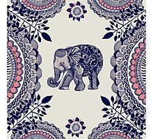 Pretty Pink Elephant  Photographic Print