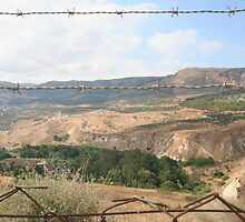 Barbed wire separating Israel and Jordan by Jeff Hobbs