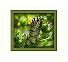 Caterpillar Eating Art Print