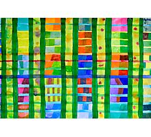 Coloured Fields With Bamboo Photographic Print