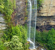 Katoomba Falls, Blue Mountains, NSW by Sharon Brown