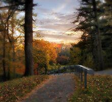 Sunset Stroll by Jessica Jenney