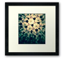 Black Rose Petals Framed Print