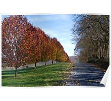 Autumn Country Row Poster