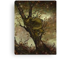 Firefly Frog Canvas Print