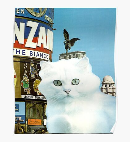 Piccadilly Kitty Poster