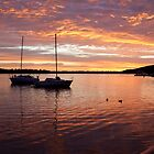 Noosa at Peace by Jeff Symons
