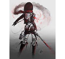 Mikasa Art Hard Pen Photographic Print