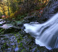 Tod Creek Falls by Don Guindon