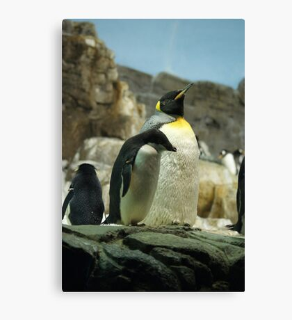 Penguin pride! Canvas Print