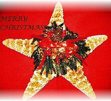 CHRISTMAS STAR-FISH! by Eileen Brymer