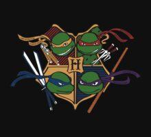 TMNT at Hogwarts