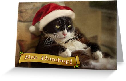 Bah Humbug Trouble by Owed To Nature