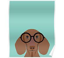 Remy - Fashion Glasses Doxie Dashcund Hipster Dog  Poster