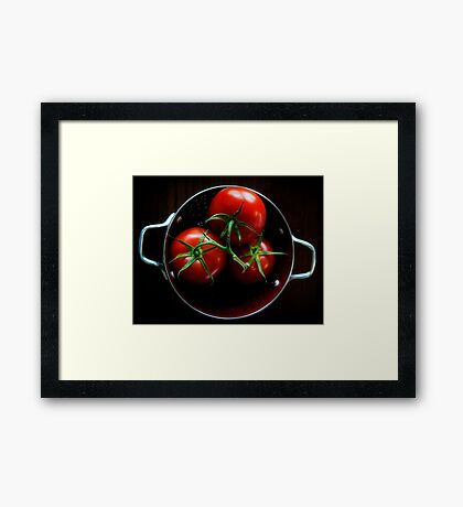Homegrown Tomatoes  Framed Print