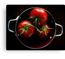 Homegrown Tomatoes  Canvas Print