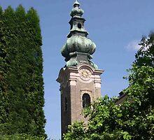 Saltzburg Steeple by Escott O. Norton