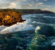 Wild West Coast by Michael Treloar