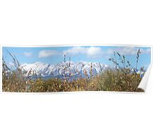 Mountain Scenery Poster