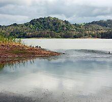 Lake  Baroon II by jayneeldred