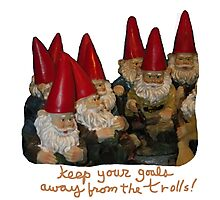 Keep Your Goals Away from the Trolls Photographic Print