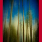 Palms Blur iPhone 4 Case by Anne  McGinn