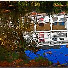 Reflecting Pond by Chet  King
