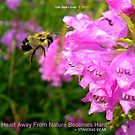 Bee-ing Productive by Deb  Badt-Covell