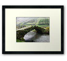 A Living Bridge Framed Print