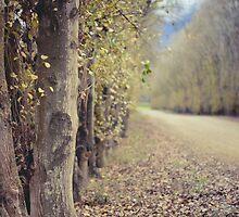 Autumn whisper   by lightwanderer