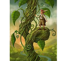 Jack and the beanstalk Photographic Print