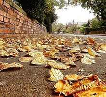 Paved With Gold by Liam Liberty