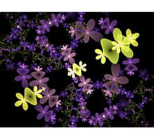 Strange Flowers Photographic Print