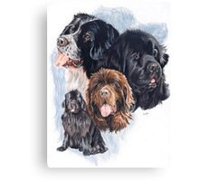 Newfoundland /Ghost Canvas Print