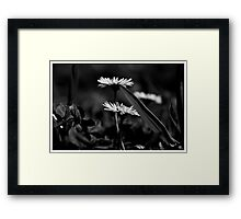 And then there were two Framed Print