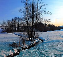 Trees and stream in winter wonderland | landscape photography by Patrick Jobst