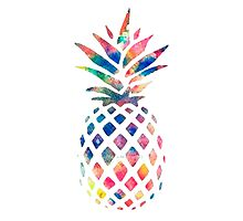 Rainbow Pineapple by Bujjoh
