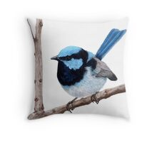 Superb fairy-wren Throw Pillow