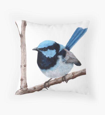 Superb fairy-wren Throw Pillow