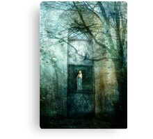 Seeking Mary Canvas Print