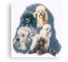 Poodle w/Ghost Image Canvas Print