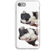 Two Guinea Pigs iPhone Case/Skin